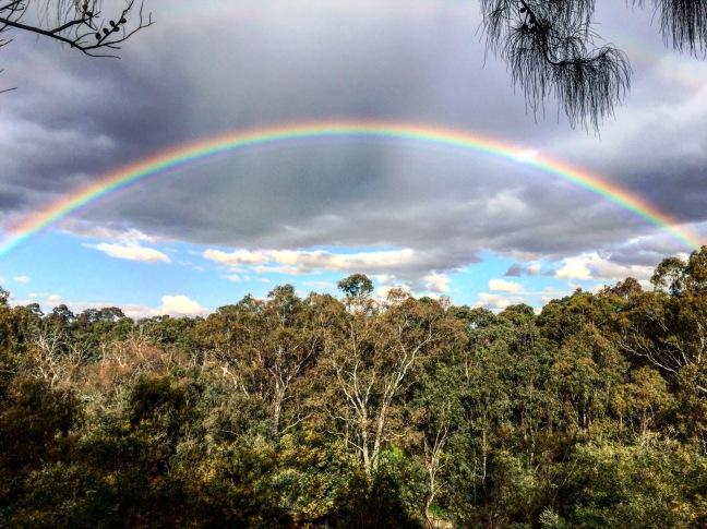 melb rainbow